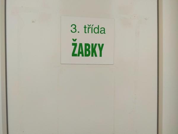 trida (11)